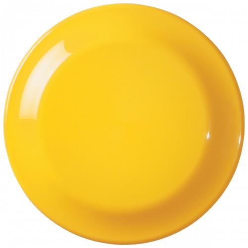 Frisbee Large